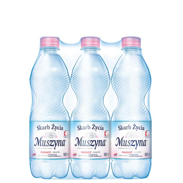 Skarb Życia Muszyna Woda Mineralna Nie Gazowana 0.5 Zgrzewka